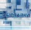 Выставки в Дмитриеве-Льговском
